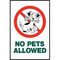 Not Pet Friendly