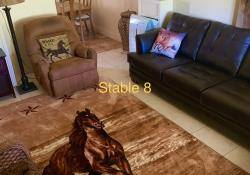 Stable 8