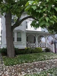 Ocean Ciry Mansion