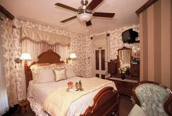The Primrose Room